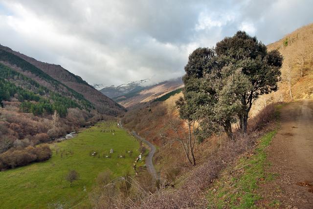 Valle del Cárdenas