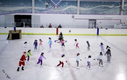 Logroño, La Rioja, Gala patinaje Navidad 2014