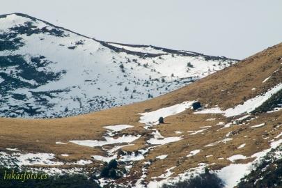 Otoño-invierno-2